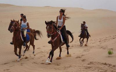 Horse Rides in Dubai